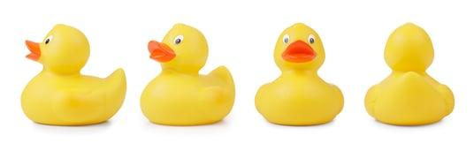 Ducks tight horizontal.jpg